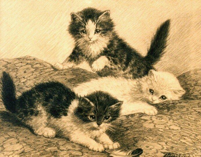 Художник cornelis raaphorst кошки котята