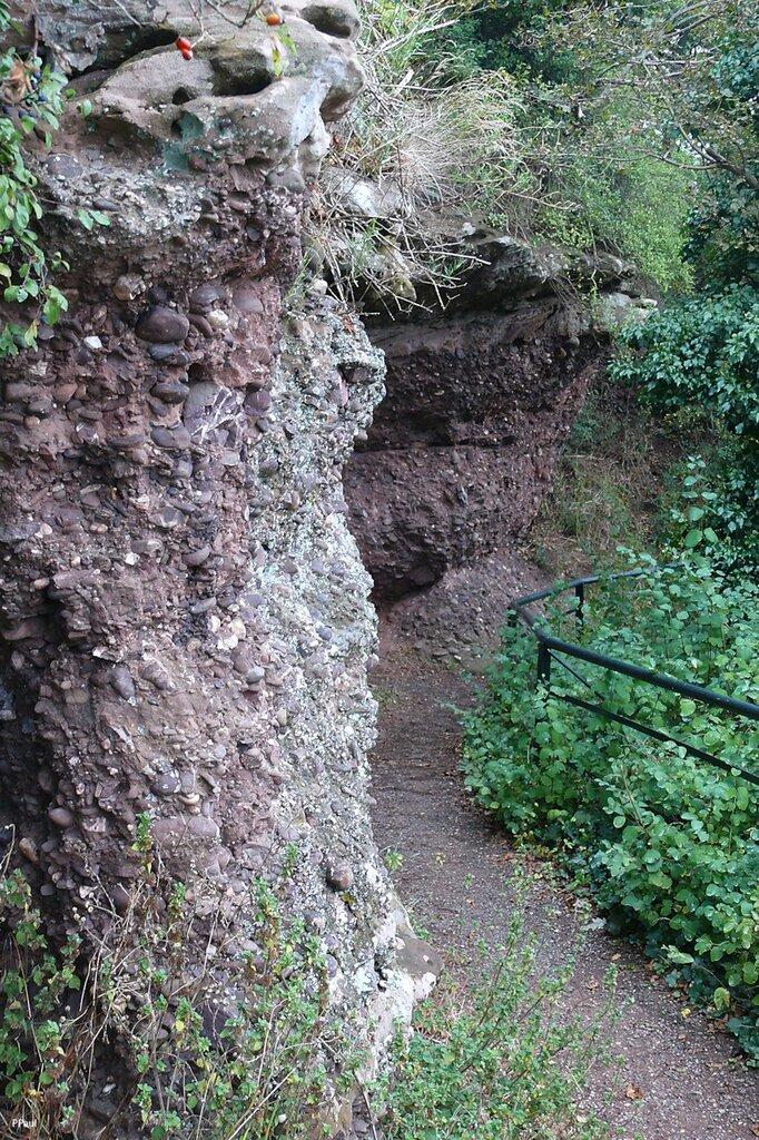 Природа Айфеля в городке Нидегген