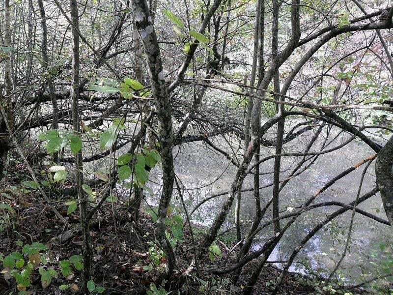 Горячий Ключ, октябрь 2010, природа