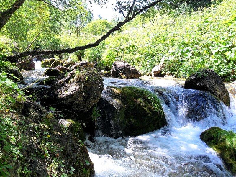 На реке Цеце...