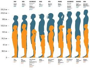 самые высокие и самые низкие спортсмены