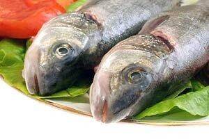 Льготникам Камчатки вчера раздали свежий бесплатный улов лососевых