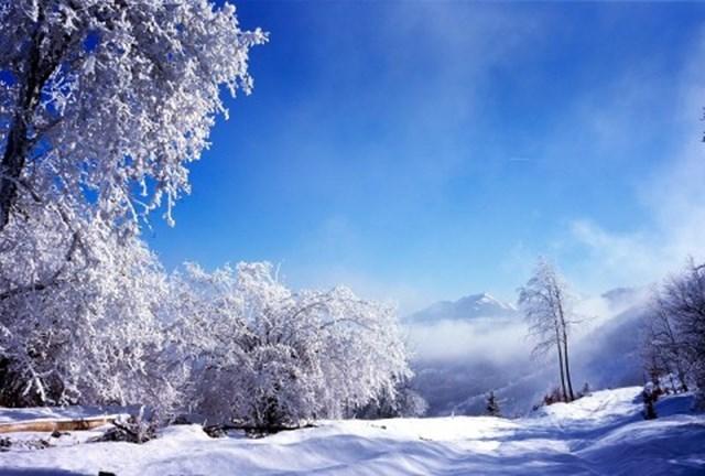 100 самых красивых зимних фотографии: пейзажи, звери и вообще 0 10f592 5b43b013 orig