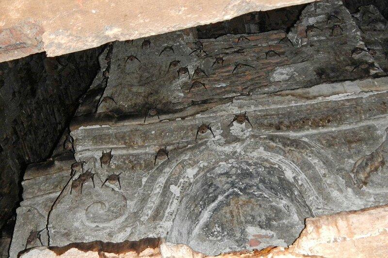 Летучие мыши на потолке ступе (чеди) храмового комплекса Wat Phra Si Sanphet в древней столице Сиама Аюттайе, Таиланд
