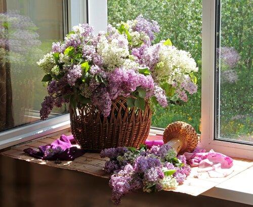 Весны чудесный аромат...