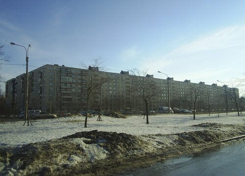 Дунайский пр. 43к1