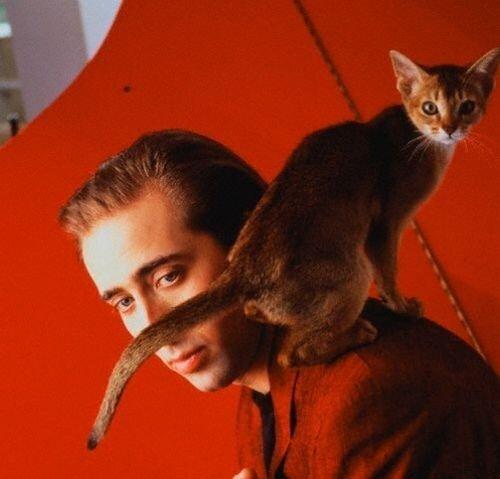 Nicolas Cage and His Cat