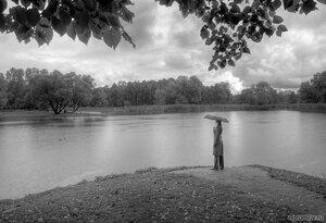 Осенью в парке (дождь, зонт, монохром, осень, Парк Победы, человек)