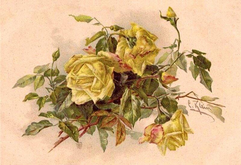 К. Кляйн. 63. Жёлтые розы.