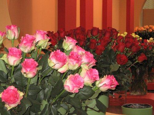 розы фото букеты