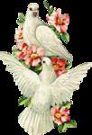 kjb_victorianbirdsandflowers.png