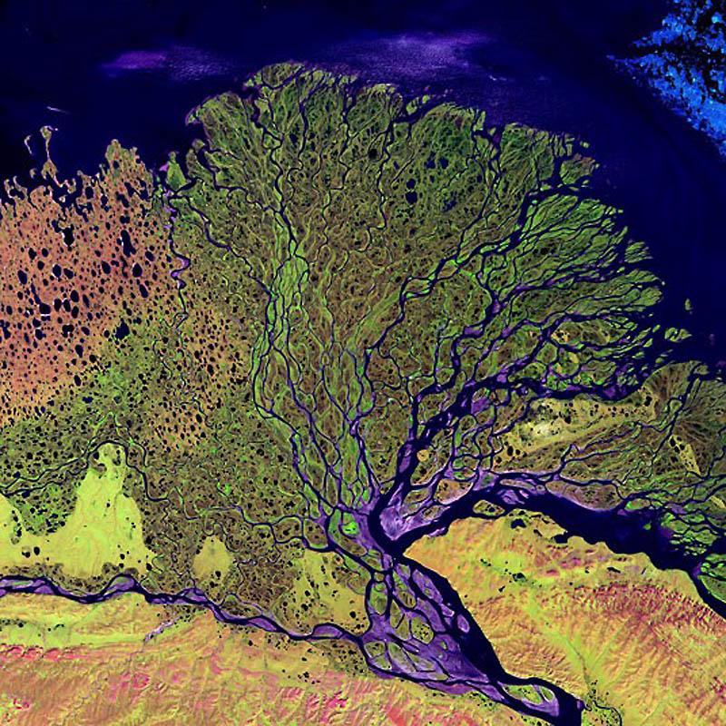 16. Дельта реки Лена, Россия. (SPL / Barcroft Media)