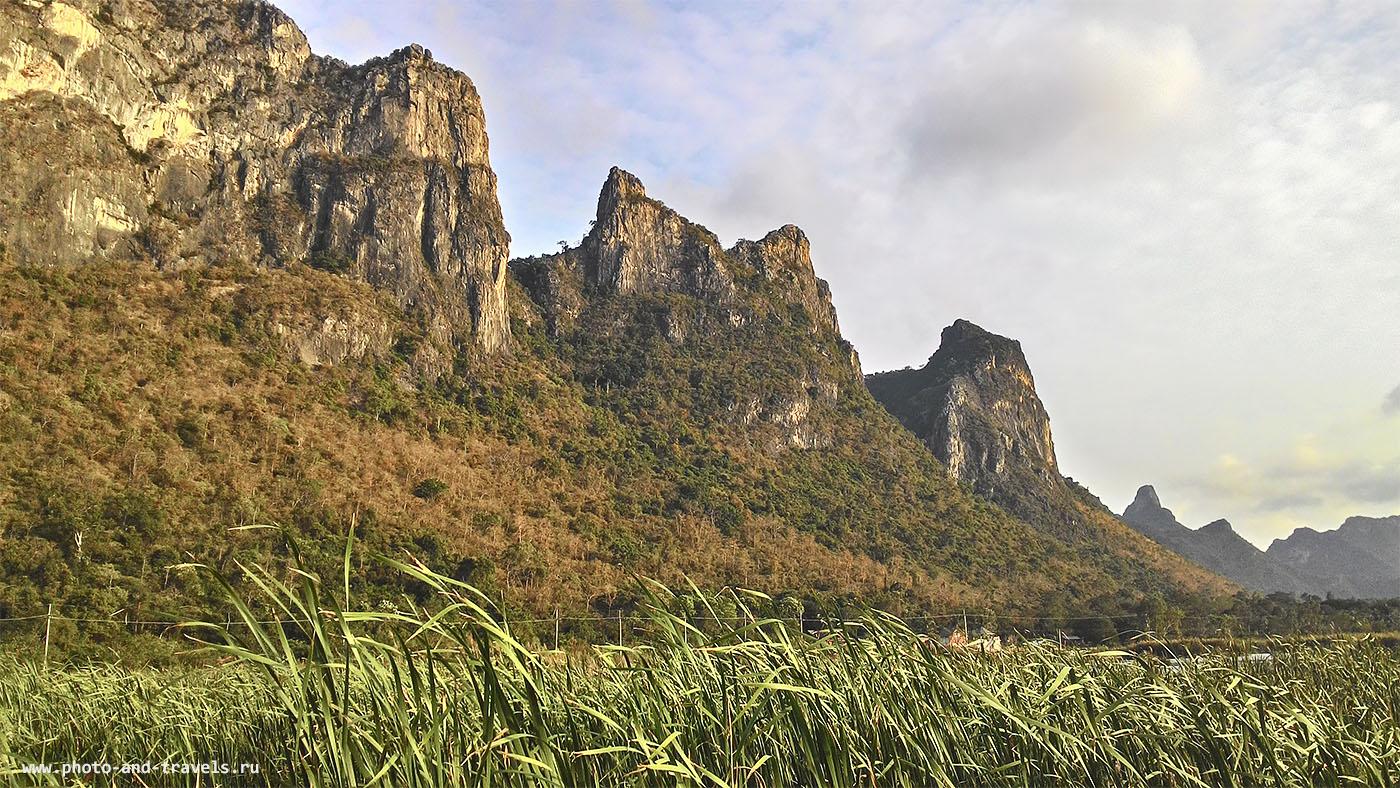 Фото 11. Болото с лотосами Thung Sam Roi Yot Freshwater Marsh в национальном парке Khao Sam Roi Yod в Таиланде. Снято на смартфон во время тура по стране за рулем арендованного автомобиля.