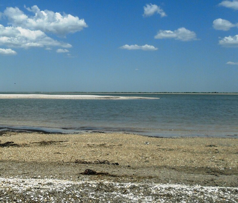 Однажды, у островов, порою летней ... SAM_8866.JPG