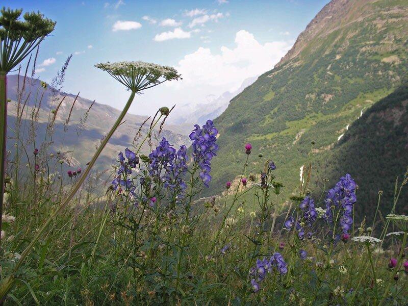 Терскол гора Чегет