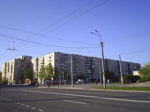 Будапештская ул. 100