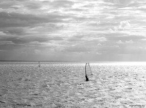 Свет, ветер и вода (виндсерфинг, монохром, Финский залив)
