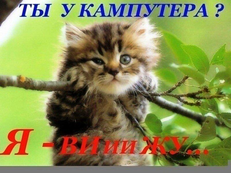 LuNnAyA. humayka. Картинки. vrunishka. Sweety_88. Поблагодарили 41