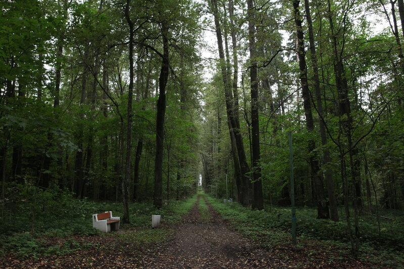 усадьба в селе Вороново
