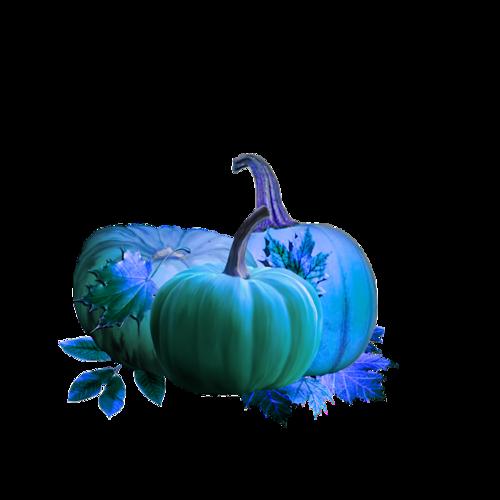 Хеллоуин (30).png