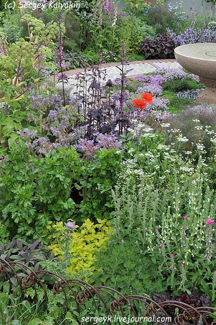 A modern Apothecary Garden (16).jpg