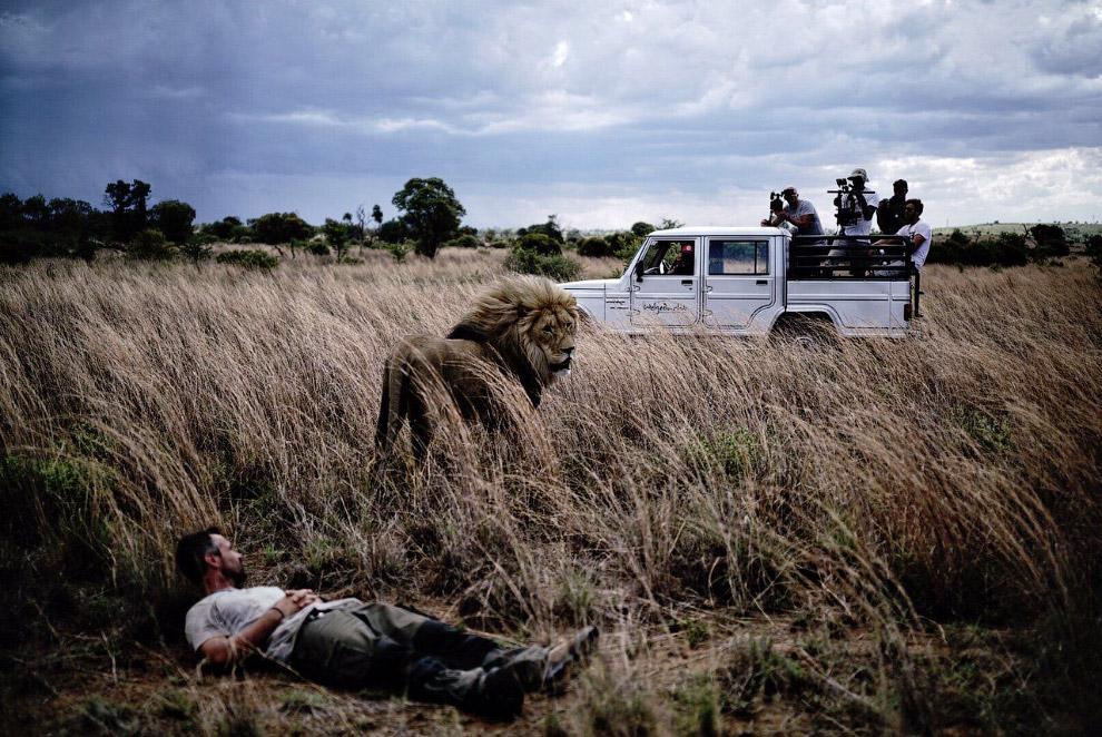 9. «Это было невероятно увидеть вблизи львиные лапы и осознать их размер». Фотографии этого не