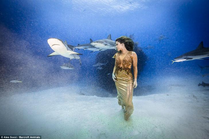 От акул модель не защищала никакая клетка, и Карина надеется, что этот факт поможет людям узнать бол
