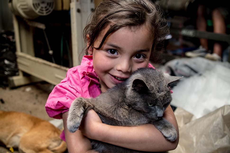 Колумбия, семейный доход — 163 доллара на взрослого в месяц. Любимая игрушка — кошка.