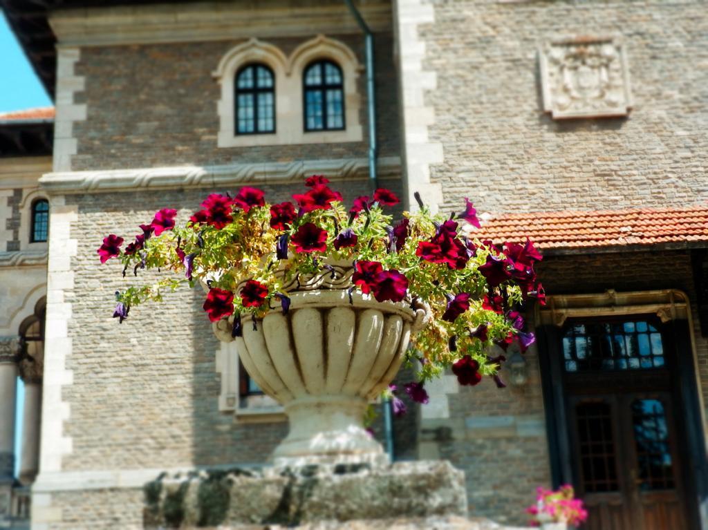 Замок Кантакузино. (Stefan Jurca)
