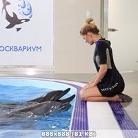 http://img-fotki.yandex.ru/get/45082/340462013.387/0_3fa5da_69c8bea9_orig.jpg