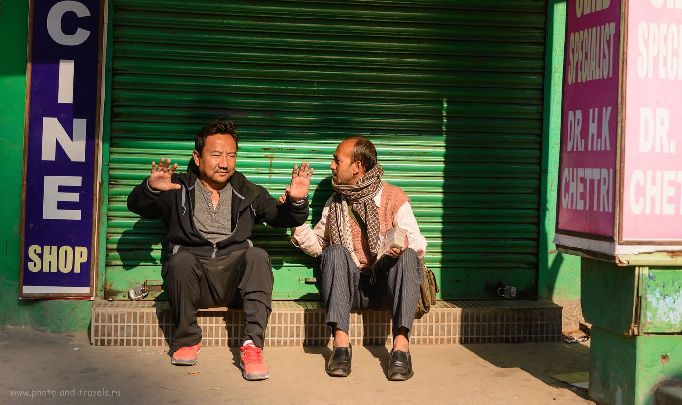 Фотография 6. Два друга. Что посмотреть в Гангтоке. Отчет о путешествии по Индии. 2.8, 1/2500, 640, 55.