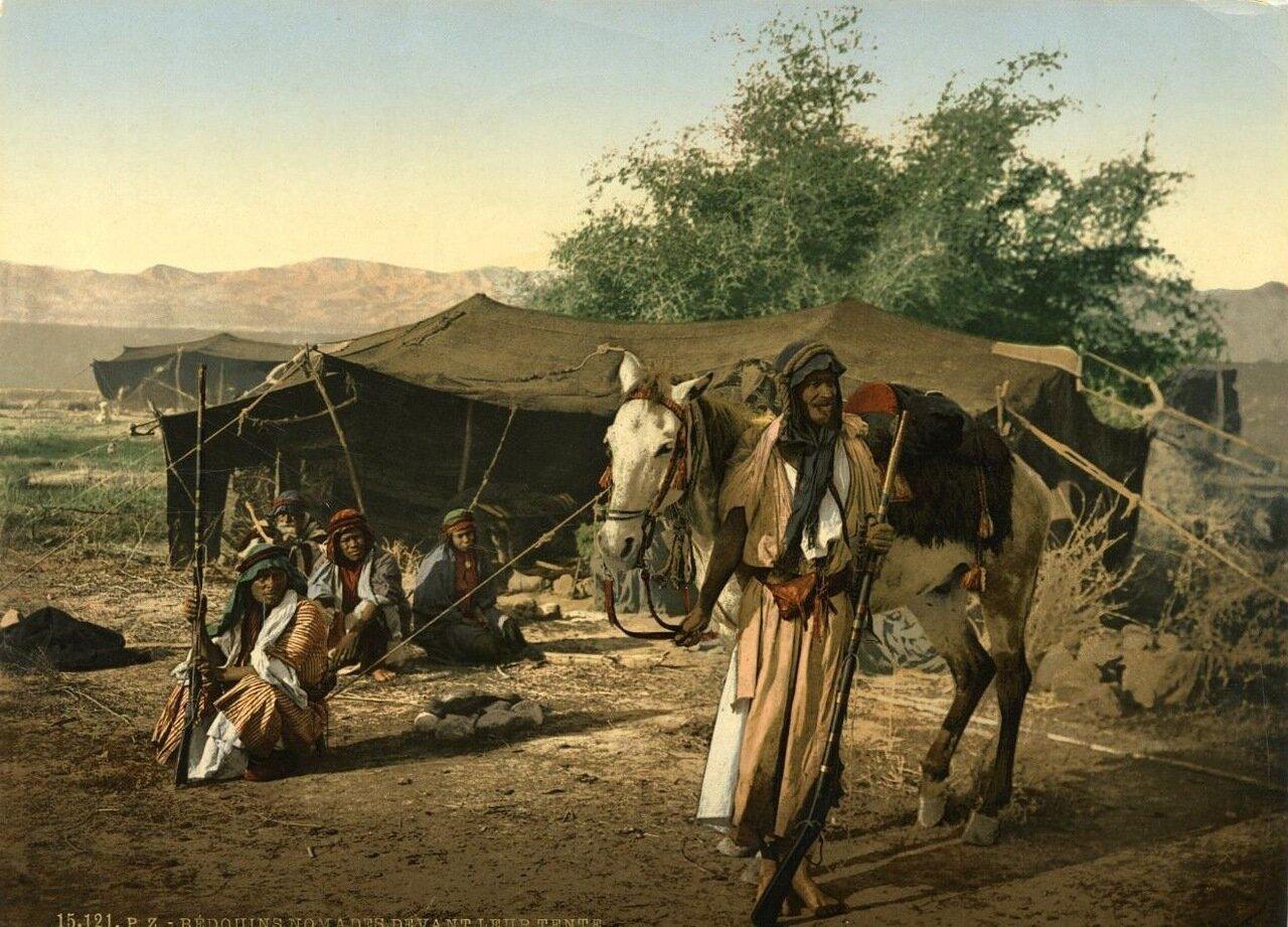 Бедуинские кочевники