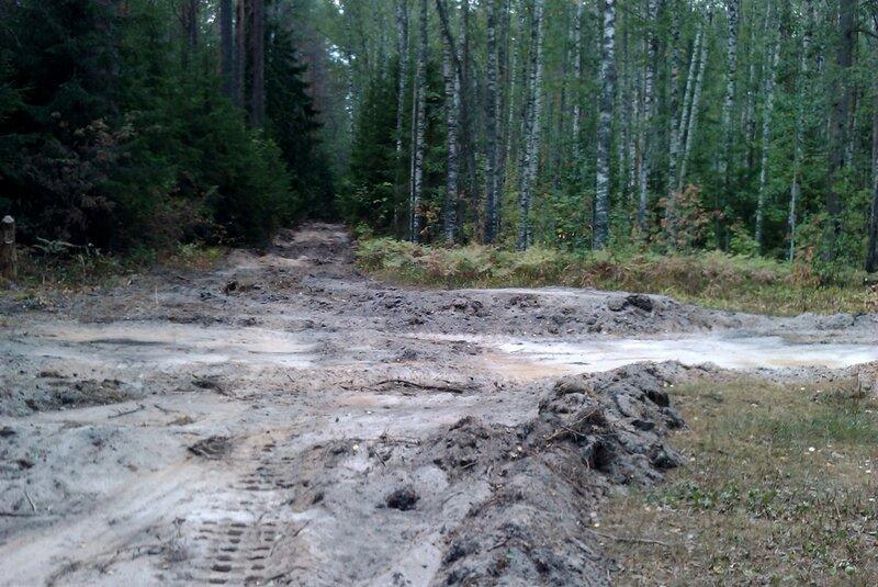 дорога из песка