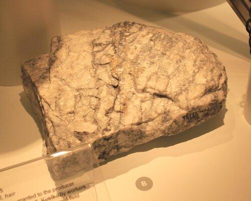 Образец золотоносной руды