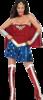 Superhero Womens Costume