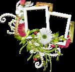 VerenaDesigns_WakeupSpring_cluster01.png