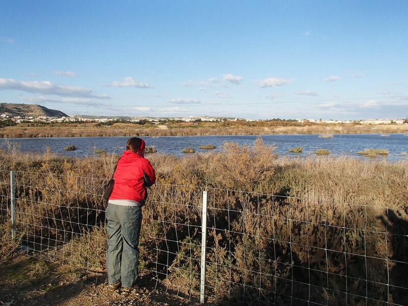 соленое озеро Ороклина обнесено забором