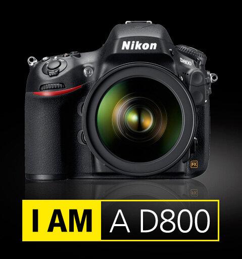 Автор: Петкун Евгений, блог Евгения Владимировича, фото, фотография: Nikon D800