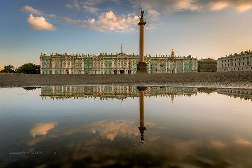 Утро на Дворцовой