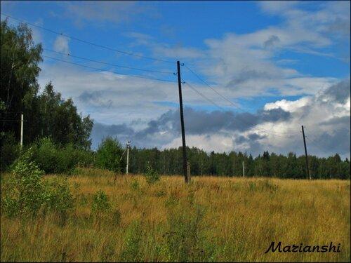 Августовское поле