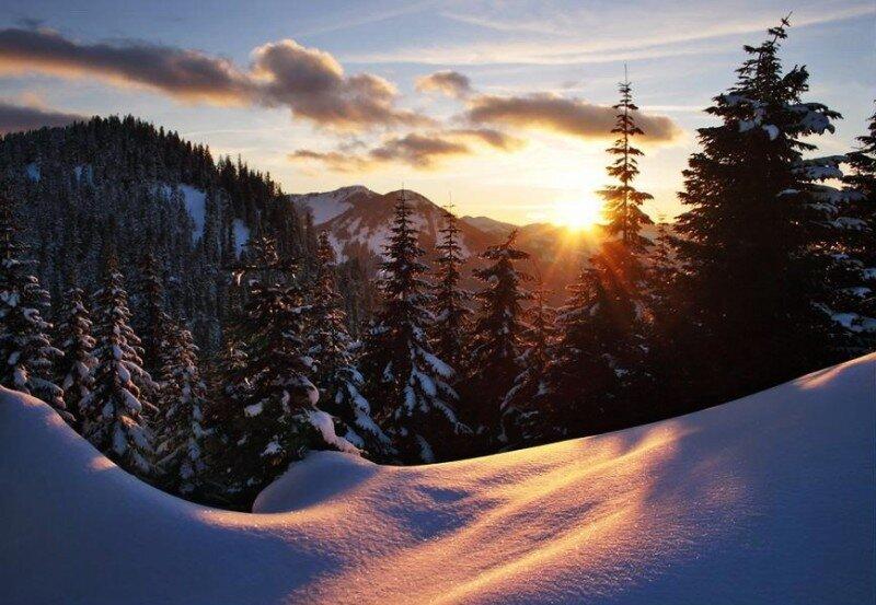 Природа.  Вот и зима пришла.