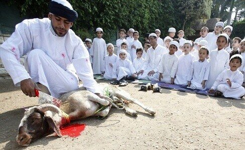 A butcher gives students a mock demonstration on how to perform the ritual sacrifice of an animal before the upcoming Eid Al-Adha at Nile Garden school in Cairo