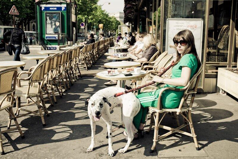 girl dalmatian dog breakfast paris photos by Yanidel