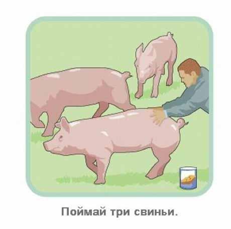 http://img-fotki.yandex.ru/get/4511/130422193.c1/0_73114_d049c520_orig