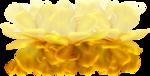 0_59e03_2f40bf58_XL[1].jpg