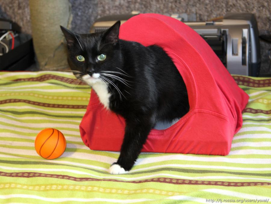 Домик для кошки из проволоки и футболки.