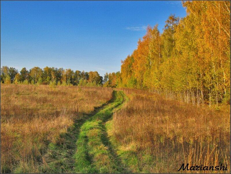 Октябрь в Подмосковье. Полевая дорога