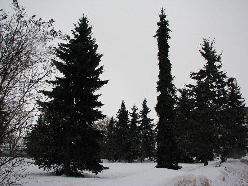 Возле Новгородской мэрии стоит живая иллюстрация к Чехову.  Толстый и