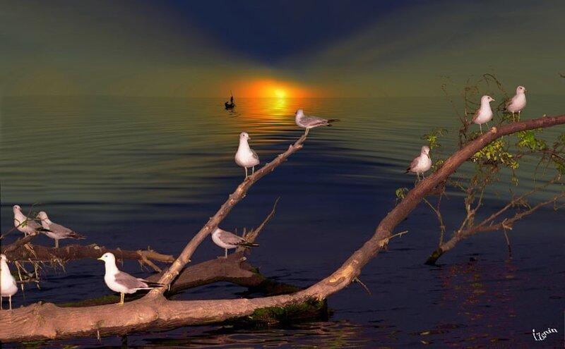 美的令你窒息的图片(大海) - 剑舞丹青 - 剑舞丹青