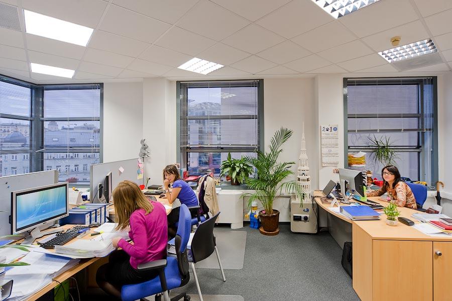 работа в онлайн офисе в москве производим черенки